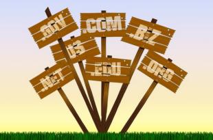 Domainendungen 310x205 - World Wide Web: Die passende Domainendung für die Webseite