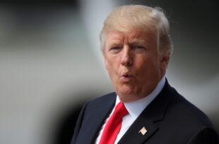 trump und macron demonstrieren einigkeit 310x205 - Trump und Macron demonstrieren Einigkeit