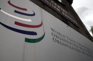 wto chef verteidigt g20 beschluesse 310x205 - WTO-Chef verteidigt G20-Beschlüsse