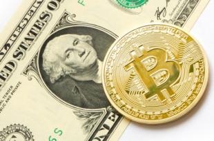 Bitcoin und Dollar 310x205 - Der Bitcoin - wie geht es 2019 weiter mit der Kryptowährung ?