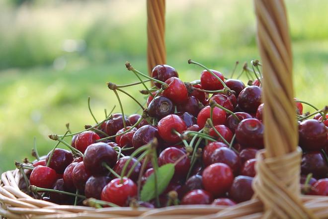 Warenkorb - Lebensmittel per Mausklick: die Digitalisierung des Lebensmittelhandels