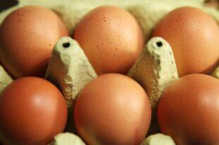 aldi sued kuendigt preiserhoehung fuer eier an 310x205 - Aldi Süd kündigt Preiserhöhung für Eier an