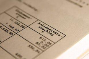 gruenen finanzexperten kritisieren fdp steuerplaene 1 310x205 - Grünen-Finanzexperten kritisieren FDP-Steuerpläne