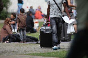 oekonomen fordern korrektur der fluechtlingspolitik 310x205 - Ökonomen fordern Korrektur der Flüchtlingspolitik