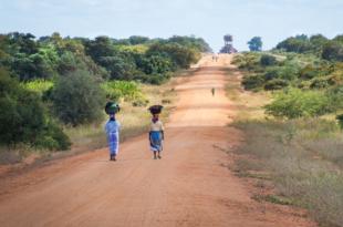 Afrika Strasse 310x205 - Nordafrika: Weiterhin hohe Zahlungsrisiken für Lieferanten