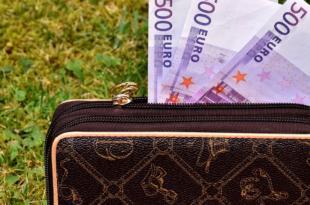 Geldbeutel 310x205 - Studie: Was wissen die Deutschen über Finanzen?