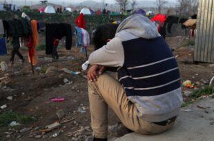 zentralrat der muslime die meisten fluechtlinge bleiben nicht 310x205 - Zentralrat der Muslime: Die meisten Flüchtlinge bleiben nicht