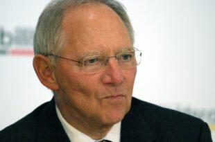 gruene fraktionsgeschaeftsfuehrerin kritisiert schaeuble 310x205 - Grüne-Fraktionsgeschäftsführerin kritisiert Schäuble