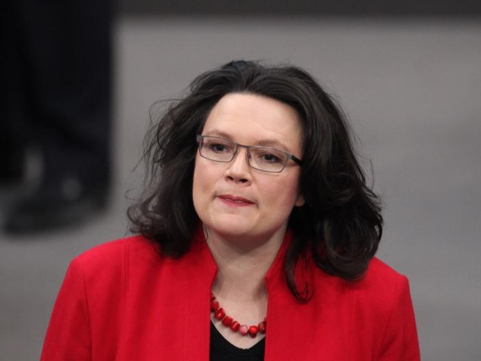 politikforscher nahles als kommissarische spd chefin problematisch - Politikforscher: Nahles als kommissarische SPD-Chefin problematisch