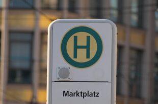 vku praesident kritisiert modellpolitik deutscher autobauer 310x205 - VKU-Präsident kritisiert Modellpolitik deutscher Autobauer