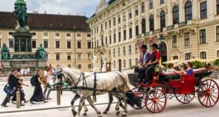 Fiaker Wien 310x165 - 8% mehr Nächtigungen in Wien im Februar