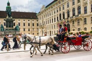Fiaker Wien 310x205 - 8% mehr Nächtigungen in Wien im Februar