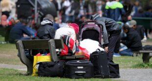 schutzquote fuer fluechtlinge haengt von bundesland ab 310x165 - Schutzquote für Flüchtlinge hängt von Bundesland ab