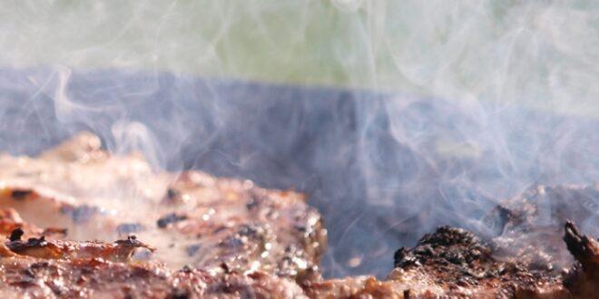 Bundesregierung Tropenholz in zahlreichen Grillkohle Proben 660x330 - Bundesregierung: Tropenholz in zahlreichen Grillkohle-Proben