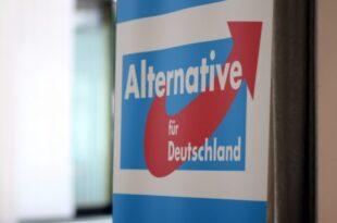 afd plant parteinahe gustav stresemann stiftung 310x205 - Parteienforscher sehen AfD als Konkurrenz für CSU