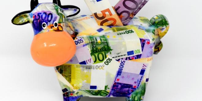 sparen 660x330 - Enteignet, Kommentar zur Zinspolitik der EZB