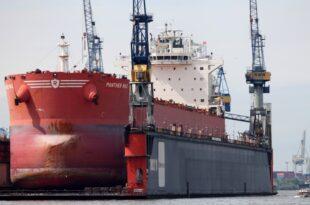 werftunternehmer meyer kritisiert wachsenden staatseinfluss 310x205 - Werftunternehmer Meyer kritisiert wachsenden Staatseinfluss