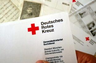DRK verzeichnet Rekordzahl von ehrenamtlichen Helfern 310x205 - DRK verzeichnet Rekordzahl von ehrenamtlichen Helfern