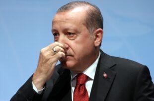 sterreichs Außenministerin weist Erdogan Kritik zurück 310x205 - Österreichs Außenministerin weist Erdogan-Kritik zurück