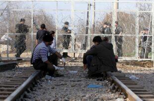 Asylbewerberzahlen in der EU gehen weiter zurück 310x205 - Asylbewerberzahlen in der EU gehen weiter zurück