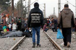 Bundesregierung Kein EU Sondergipfel zur Asylpolitik geplant 310x205 - Bundesregierung: Kein EU-Sondergipfel zur Asylpolitik geplant
