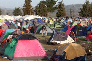 Habeck Bundesinnenministerium blieb bei Asyl Prognose stur 310x205 - Habeck: Bundesinnenministerium blieb bei Asyl-Prognose stur