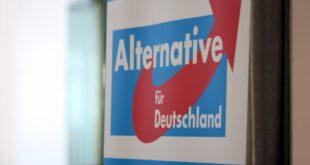 Parteienforscher Asyldebatte hilft eher der AfD 310x165 - Parteienforscher: Asyldebatte hilft eher der AfD