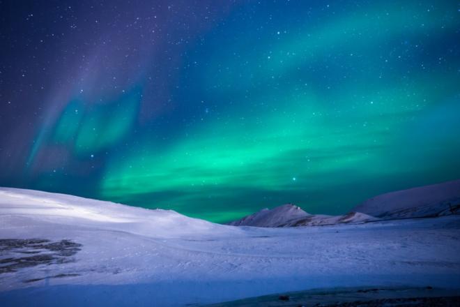 Polarlichter - Die Arktis - faszinierender Lebensraum für Pflanzen, Tiere und Menschen
