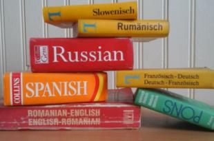 Woerterbuecher 310x205 - Übersetzungen – wann ist der Profi gefragt?