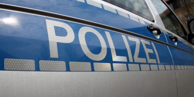 1537783763 Räumung im Hambacher Forst geht weiter 660x330 - Rechtsgutachten: Rodungspläne im Hambacher Forst nicht zulässig