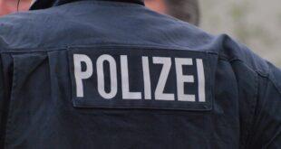 Hambacher Forst Polizei will Räumung mit Großaufgebot durchsetzen 310x165 - Hambacher Forst: Polizei will Räumung mit Großaufgebot durchsetzen
