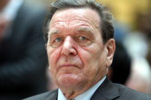 Ehefrau von Gerhard Schröder fürchtet um Sicherheit ihres Mannes 310x205 - Ehefrau von Gerhard Schröder fürchtet um Sicherheit ihres Mannes