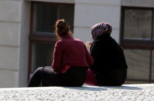 FDP kritisiert Entwurf zum Einwanderungsgesetz 310x205 - FDP kritisiert Entwurf zum Einwanderungsgesetz