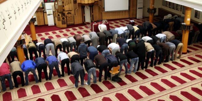 Imam Ausbildung Zentralrat der Muslime fordert politische Lösung 660x330 - Imam-Ausbildung: Zentralrat der Muslime fordert politische Lösung