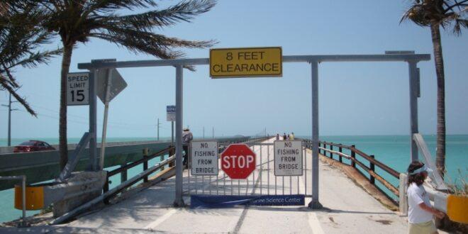 US Demokraten verlieren im hart umkämpften Florida 660x330 - US-Demokraten verlieren im hart umkämpften Florida