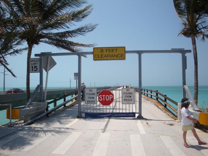 Bild von US-Demokraten verlieren im hart umkämpften Florida