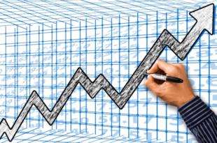 Wirtschaft 310x205 - Wirtschaft in Mittel- und Osteuropa brummt