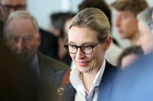 ZDF Politbarometer AfD legt wieder zu 310x205 - ZDF-Politbarometer: AfD legt wieder zu