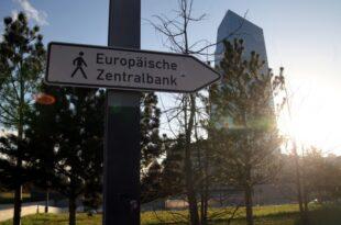 EZB Ratsmitglied Nowotny sorgt sich um deutsche Wirtschaft 310x205 - EZB-Ratsmitglied Nowotny sorgt sich um deutsche Wirtschaft
