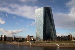 EZB stellt Anleihenkäufe ein 310x205 - EZB stellt Anleihenkäufe ein