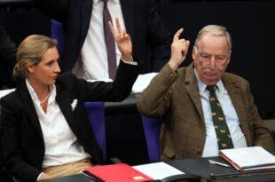 Institut der deutschen Wirtschaft sieht AfD Erfolge als Risiko 310x205 - Institut der deutschen Wirtschaft sieht AfD-Erfolge als Risiko