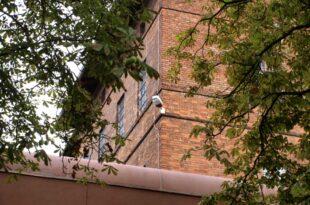 KI soll Selbstmorde in NRW Gefängnissen verhindern 310x205 - KI soll Selbstmorde in NRW-Gefängnissen verhindern
