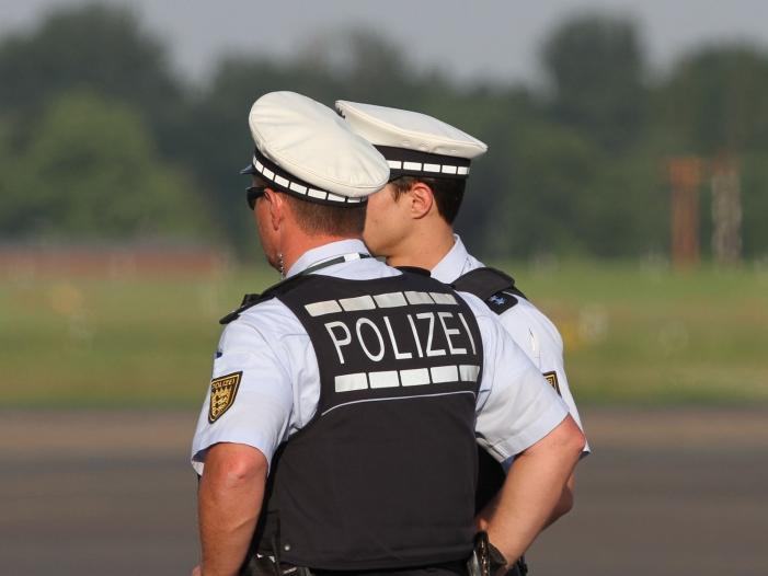Bild von Niedersachsens Innenminister kritisiert AfD-Karriere bei Beamten