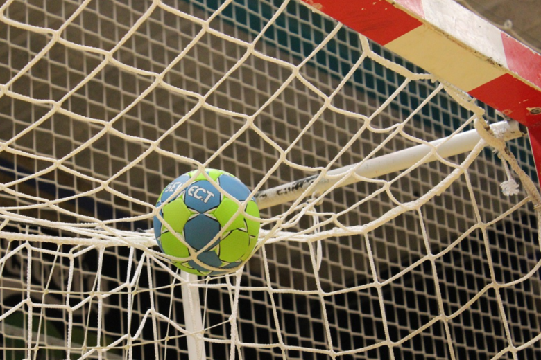 Bild von Kritik an Aussagen des Ex-Handballers Stefan Kretzschmar