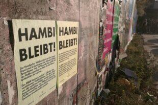 NRW bereitet neuen Grosseinsatz im Hambacher Forst vor 310x205 - Geplante Räumung im Hambacher Forst abgesagt