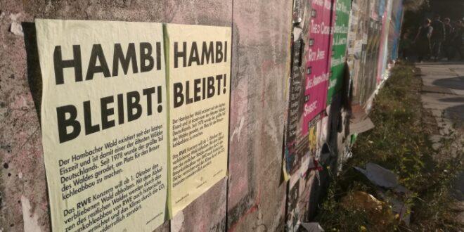 NRW bereitet neuen Grosseinsatz im Hambacher Forst vor 660x330 - Geplante Räumung im Hambacher Forst abgesagt