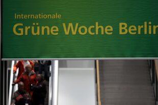 Schulze kritisiert Kloeckner zum Auftakt der Gruenen Woche 310x205 - Schulze kritisiert Klöckner zum Auftakt der Grünen Woche