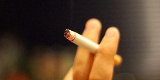 Zigarettenkippen machen neun Prozent des Muells an der Ostsee aus 660x330 - Zigarettenkippen machen neun Prozent des Mülls an der Ostsee aus