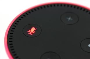 Amazon Echo Dot 310x205 - Sprachlautsprecher - geteiltes Echo der Verbraucher
