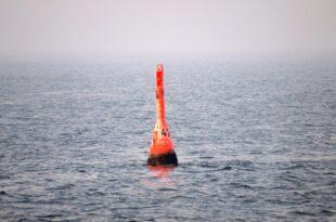 """Gruene wollen Gorch Fock durch neues Schiff ersetzen 310x205 - Grüne wollen """"Gorch Fock"""" durch neues Schiff ersetzen"""
